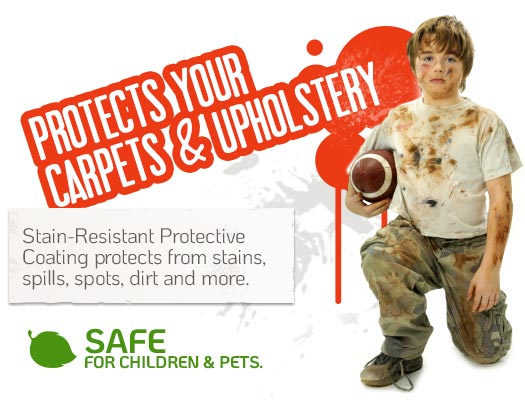 Protect Your Carpets & Upholstery