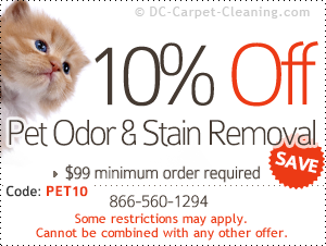 10% off pet odor & stain removal