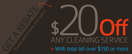 $20 Off on Any Cleaning Service