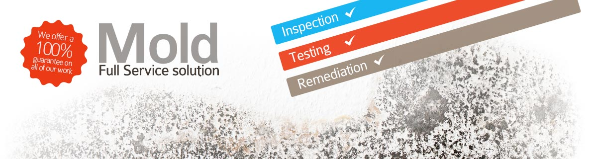 Mold Inspection & Testing in DC