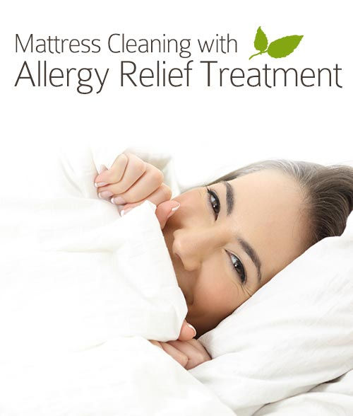 Mattress Cleaning DC