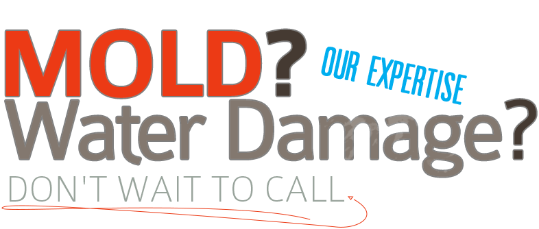 Water Damages? Mold? Call Now!